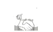 Dos Amigos Auto Sales Logo