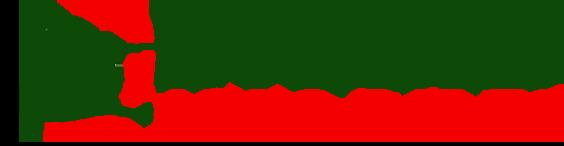 Drake Auto Sales Logo