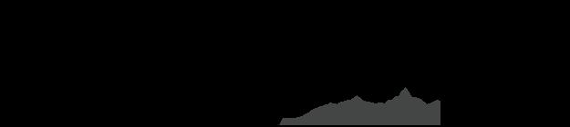 Posh Pre-Owned Logo
