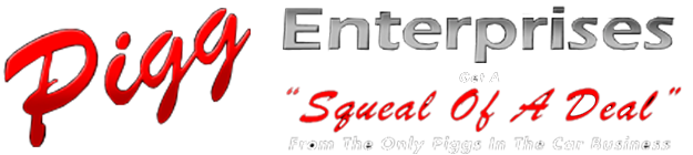 Pigg Enterprises Logo