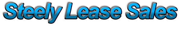Steely Lease Sales Logo