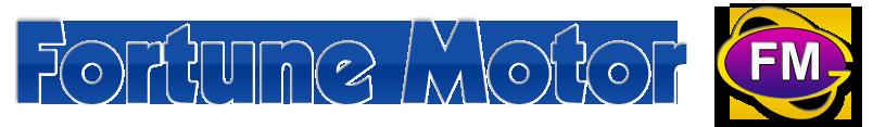 Fortune Motor Group Inc. Logo