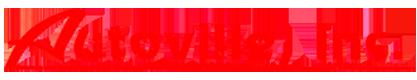 Autoville Inc. Logo